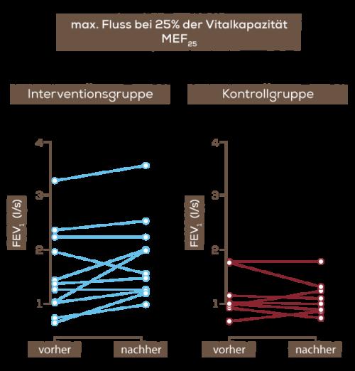 Grafik_ZF_Fluss